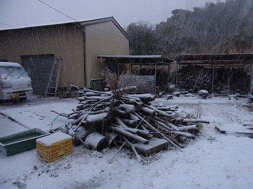 南房総でも大雪