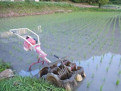 動力の除草機