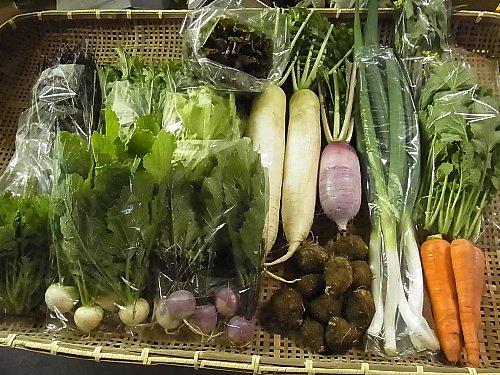 旬の有機野菜セット定期便 2014年11月28日