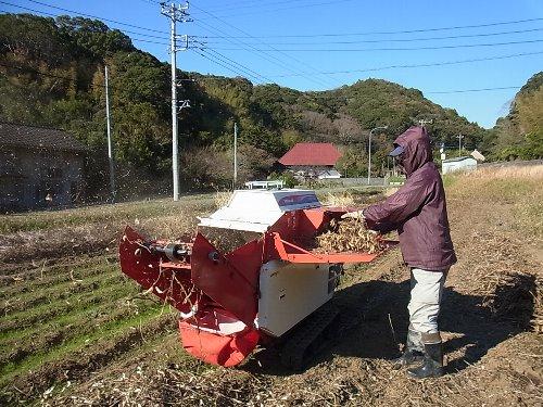 大豆脱穀 自走式大豆脱穀機