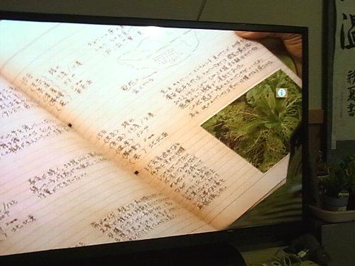 テレビ放映された日記