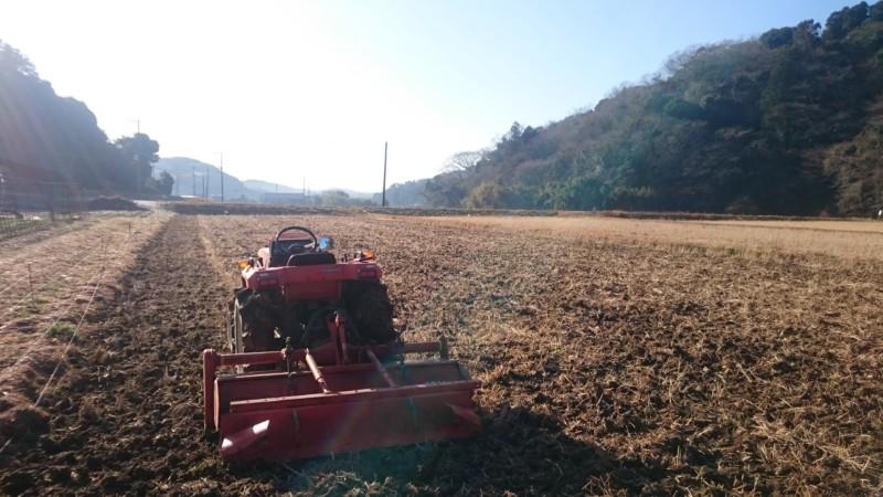 朝から田起こし