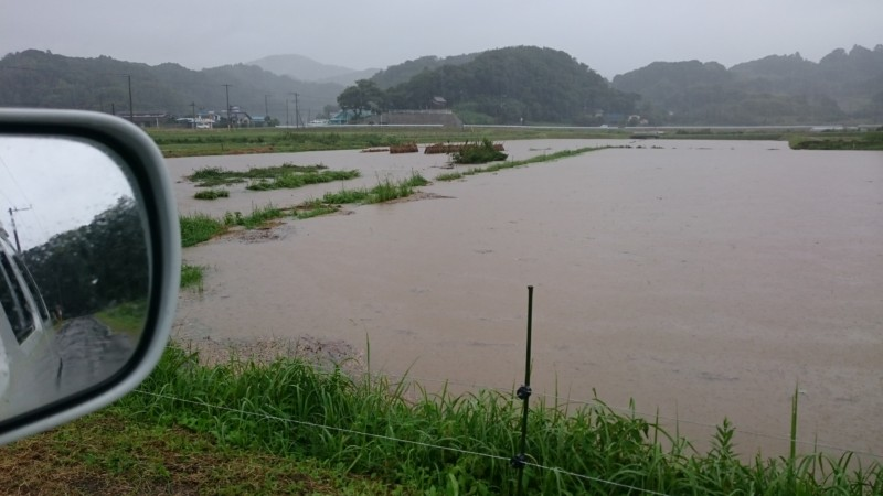大雨で田んぼが冠水
