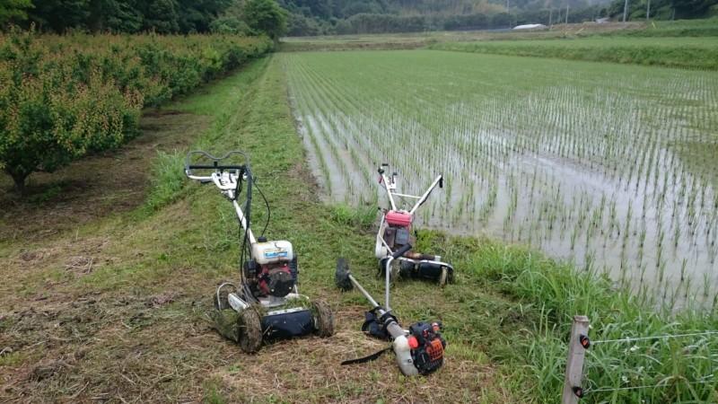 草刈り三点セット