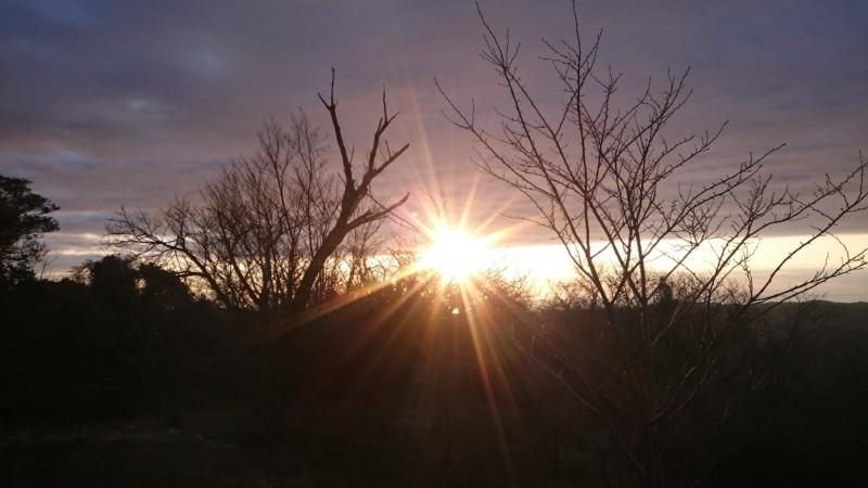 金比羅山から望む初日の出