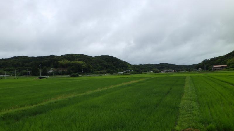 旧三芳村山名の原