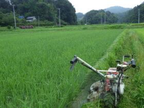 ウイングモア 自走式2面刈り草刈り機